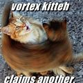 vortex kitty